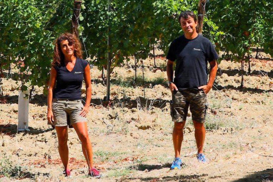I vini di CHEF@HOME – Manaresi Agricoltura e Vino